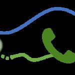 Voice VLAN - Auxiliary VLAN